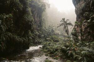 δραστηριότητες Κόστα Ρίκα
